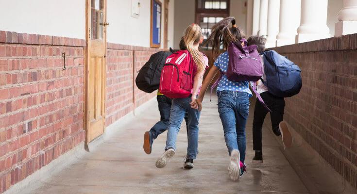 راز موفقیت نظام آموزشی هلند از نگاه بهترین مشاور کنکور
